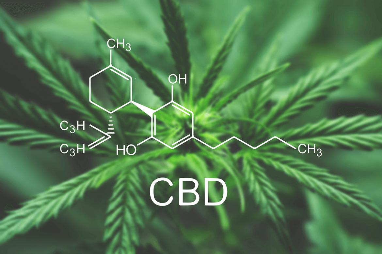 Czy efekt placebo występuje w przypadku CBD?